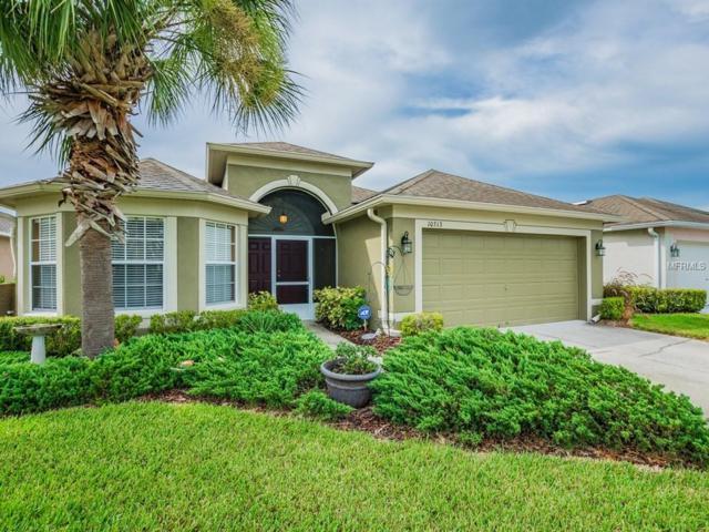 10313 Buncombe Way, San Antonio, FL 33576 (MLS #T3124174) :: Team Bohannon Keller Williams, Tampa Properties