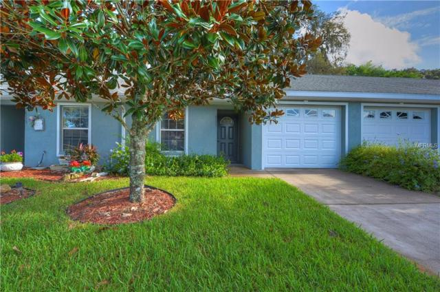 6735 Basswood Circle, Zephyrhills, FL 33542 (MLS #T3124175) :: The Duncan Duo Team