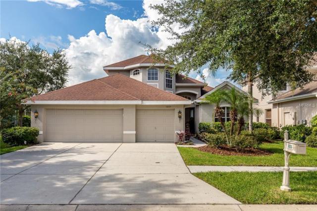 10125 Deercliff Drive, Tampa, FL 33647 (MLS #T3124181) :: Team Bohannon Keller Williams, Tampa Properties