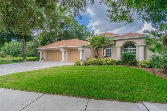 14924 Devonshire Woods Place, Tampa, FL 33624 (MLS #T3124231) :: Team Bohannon Keller Williams, Tampa Properties