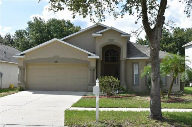 12903 Lake Vista Drive, Gibsonton, FL 33534 (MLS #T3124271) :: Team Pepka