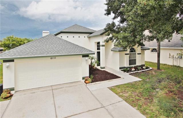6111 Wesley Brook Drive, Wesley Chapel, FL 33545 (MLS #T3124429) :: Team Bohannon Keller Williams, Tampa Properties
