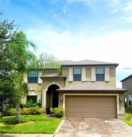 1594 Imperial Key Drive, Trinity, FL 34655 (MLS #T3124454) :: RE/MAX CHAMPIONS