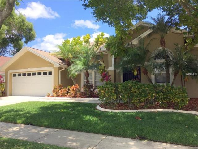 12421 Seabrook Drive, Tampa, FL 33626 (MLS #T3124528) :: Team Bohannon Keller Williams, Tampa Properties