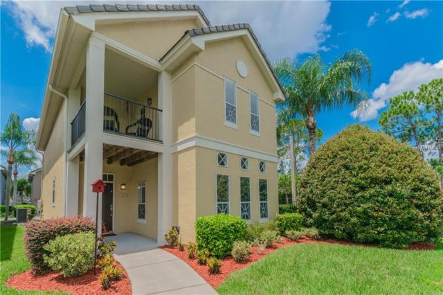 4009 Alexander Palm Court, Tampa, FL 33624 (MLS #T3124542) :: The Duncan Duo Team