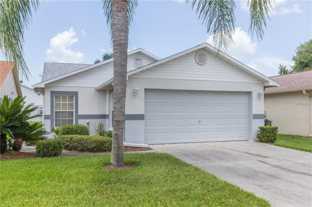 6054 Gentle Ben Circle, Wesley Chapel, FL 33544 (MLS #T3124554) :: Team Bohannon Keller Williams, Tampa Properties