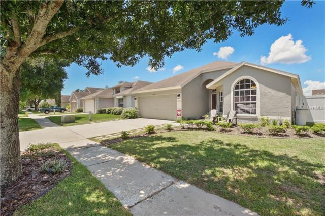 8616 Fawn Creek Drive, Tampa, FL 33626 (MLS #T3124588) :: Griffin Group