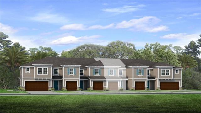 6624 Citrus Creek Lane, Tampa, FL 33625 (MLS #T3124619) :: Team Bohannon Keller Williams, Tampa Properties