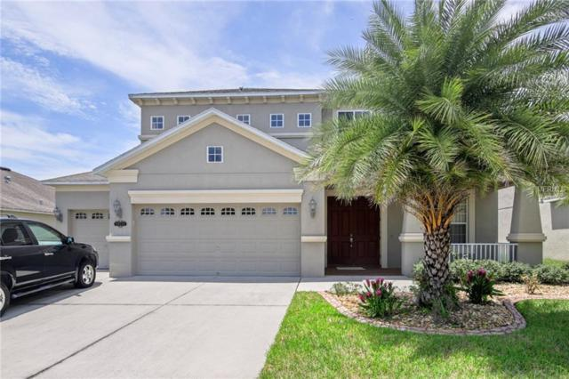 20112 Natures Hike Way, Tampa, FL 33647 (MLS #T3124709) :: Revolution Real Estate