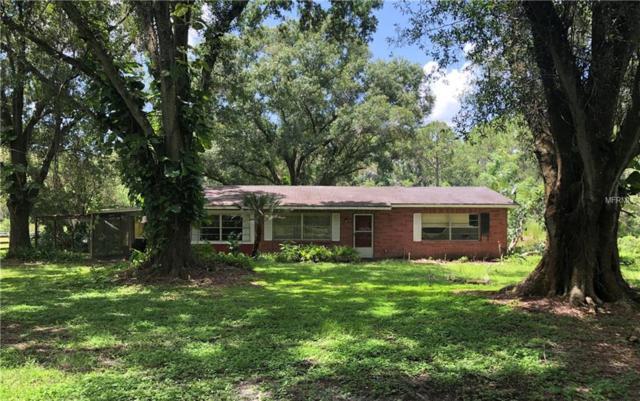 7729 Tallowtree Drive, Wesley Chapel, FL 33544 (MLS #T3124728) :: Team Bohannon Keller Williams, Tampa Properties