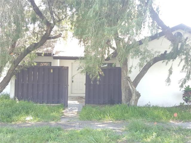 5403 Hopedale Drive, Tampa, FL 33624 (MLS #T3124745) :: Team Bohannon Keller Williams, Tampa Properties
