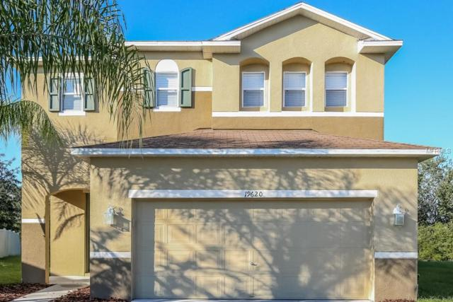 Address Not Published, Land O Lakes, FL 34638 (MLS #T3124748) :: Team Bohannon Keller Williams, Tampa Properties