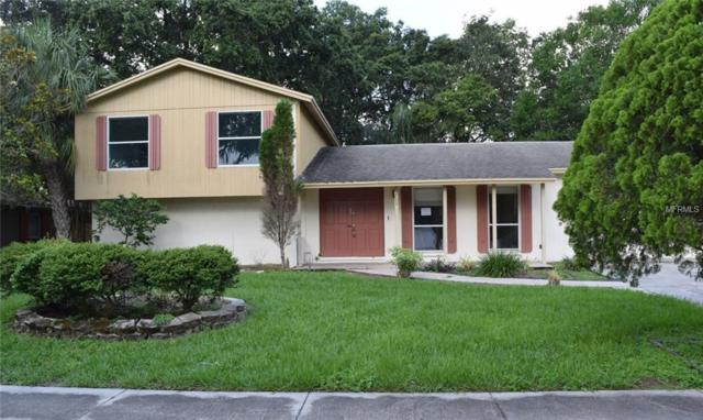 3709 Southview Drive, Brandon, FL 33511 (MLS #T3124815) :: The Duncan Duo Team