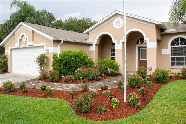22239 Willow Lakes Drive, Lutz, FL 33549 (MLS #T3124837) :: The Duncan Duo Team