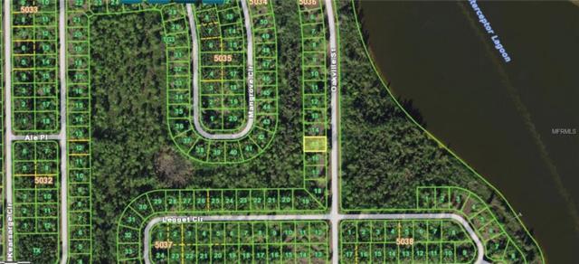 10417 Oakville Street, Port Charlotte, FL 33981 (MLS #T3124932) :: Medway Realty
