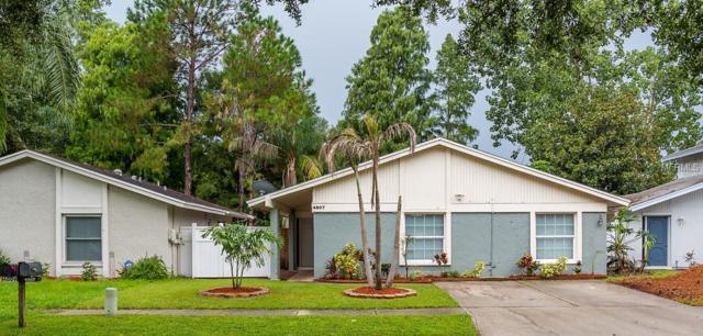 4807 Grove Point Drive, Tampa, FL 33624 (MLS #T3124942) :: Revolution Real Estate