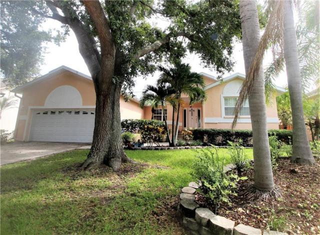 1105 Kingfish Place, Apollo Beach, FL 33572 (MLS #T3125006) :: Dalton Wade Real Estate Group