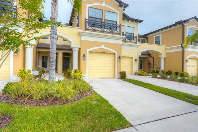 11738 Crowned Sparrow Lane, Tampa, FL 33626 (MLS #T3125022) :: Griffin Group