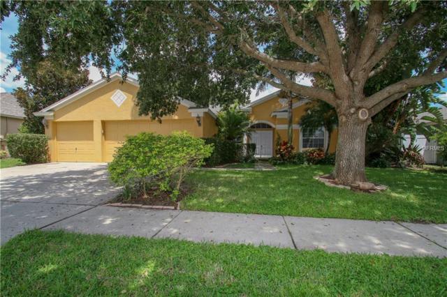 10203 Ashley Oaks Drive, Riverview, FL 33578 (MLS #T3125026) :: RealTeam Realty