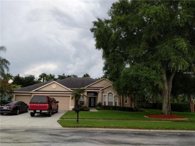 22833 Collridge Drive, Land O Lakes, FL 34639 (MLS #T3125033) :: The Duncan Duo Team