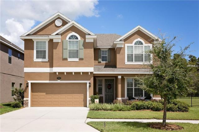 19313 Water Maple Drive, Tampa, FL 33647 (MLS #T3125260) :: Team Bohannon Keller Williams, Tampa Properties
