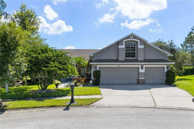 12501 Leatherleaf Drive, Tampa, FL 33626 (MLS #T3125322) :: Griffin Group