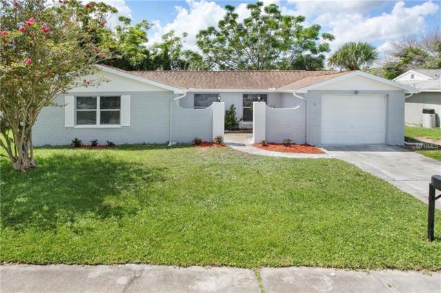 6240 Seabreeze Drive, Port Richey, FL 34668 (MLS #T3125351) :: The Duncan Duo Team