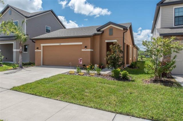 5148 Brickwood Rise Drive, Wimauma, FL 33598 (MLS #T3125393) :: RE/MAX CHAMPIONS