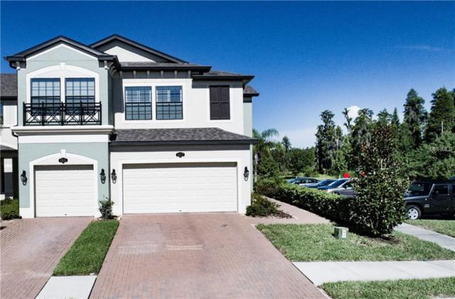 2017 Milkweed Trace, Lutz, FL 33558 (MLS #T3125465) :: Griffin Group