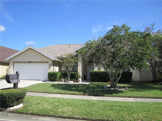 8913 Hannigan Court, Tampa, FL 33626 (MLS #T3125482) :: Griffin Group