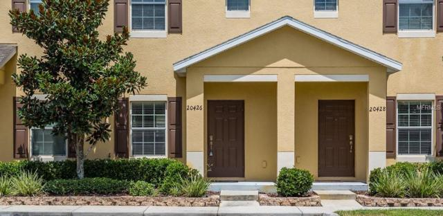 20426 Berrywood Lane, Tampa, FL 33647 (MLS #T3125499) :: The Duncan Duo Team