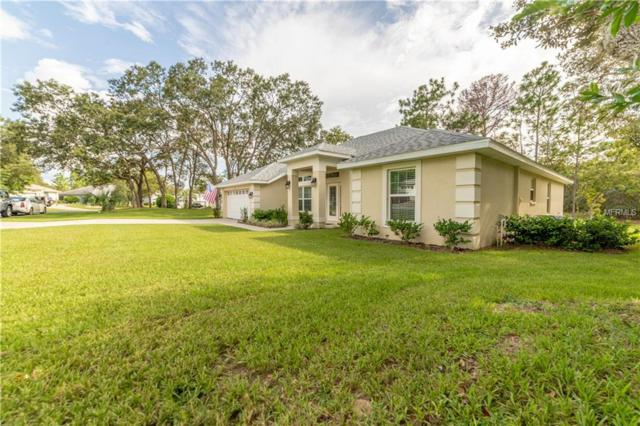 12 Black Willow Court N, Homosassa, FL 34446 (MLS #T3125511) :: Griffin Group