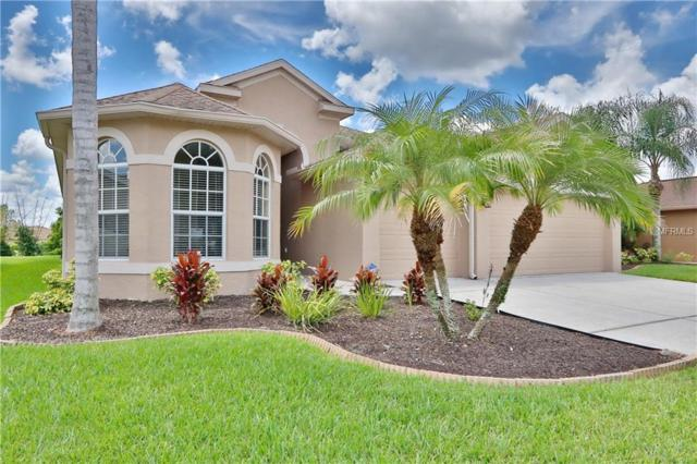 23808 Hastings Way, Land O Lakes, FL 34639 (MLS #T3125516) :: RE/MAX CHAMPIONS