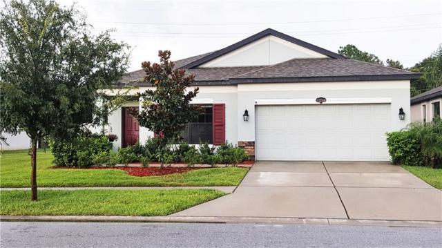 11644 Palmetto Pine Street, Riverview, FL 33569 (MLS #T3125553) :: Delgado Home Team at Keller Williams