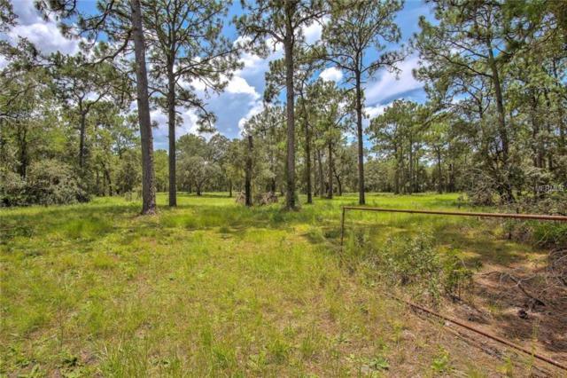 Hudson Grove Estates Middle Section, Hudson, FL 34667 (MLS #T3125870) :: Team Pepka