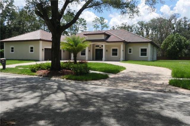 2411 Tangerine Hill Court, Lutz, FL 33549 (MLS #T3125958) :: The Brenda Wade Team