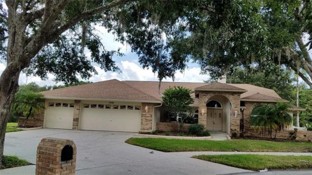 3818 Nicholas Court, Tarpon Springs, FL 34688 (MLS #T3126030) :: CENTURY 21 OneBlue