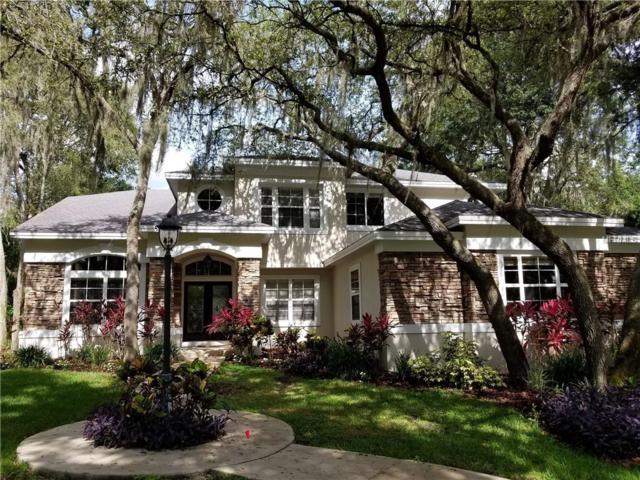 5211 Pine Rocklands Avenue, Lithia, FL 33547 (MLS #T3126439) :: Dalton Wade Real Estate Group