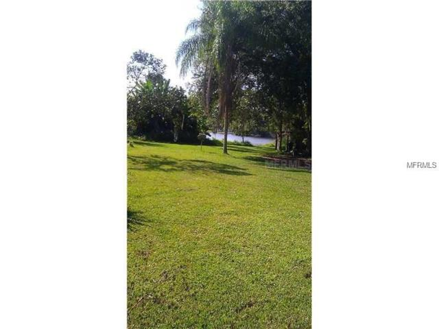 Address Not Published, Odessa, FL 33556 (MLS #T3126632) :: The Duncan Duo Team