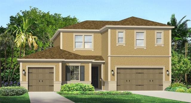 31909 Bourneville Terrace, Wesley Chapel, FL 33543 (MLS #T3126784) :: The Light Team