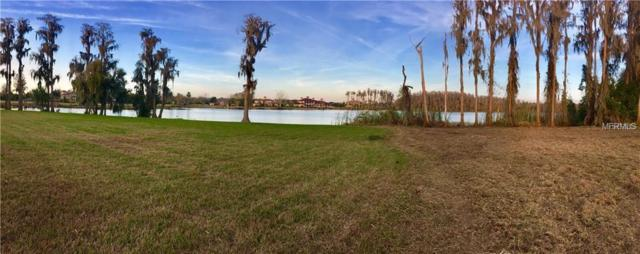17109 Breeders Cup Drive, Odessa, FL 33556 (MLS #T3126935) :: Mark and Joni Coulter | Better Homes and Gardens