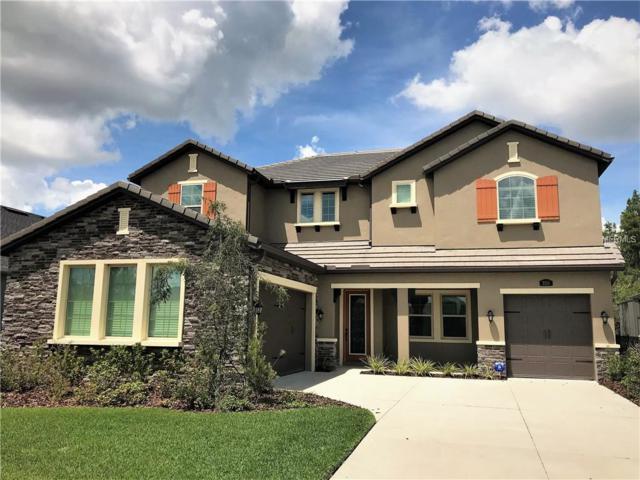 3715 Wicket Field Road, Lutz, FL 33548 (MLS #T3127086) :: Delgado Home Team at Keller Williams