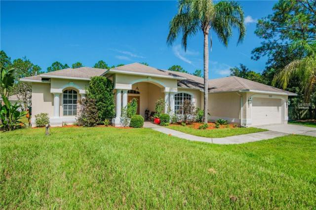 7527 Richland Street, Wesley Chapel, FL 33544 (MLS #T3127133) :: The Duncan Duo Team