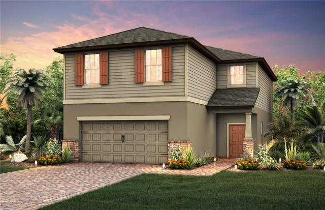3086 Oliver Creek Drive, Odessa, FL 33556 (MLS #T3127135) :: Griffin Group