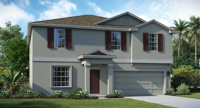 172 Taft Drive, Davenport, FL 33837 (MLS #T3127392) :: RE/MAX Realtec Group