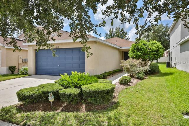 11246 Cocoa Beach Drive, Riverview, FL 33569 (MLS #T3127441) :: The Duncan Duo Team
