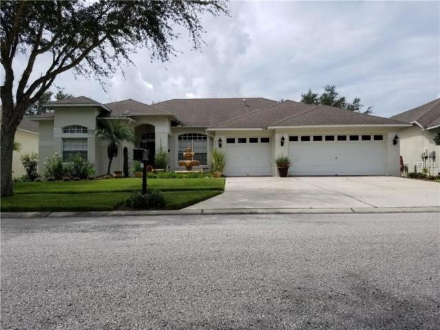 19203 N Dove Creek Drive, Tampa, FL 33647 (MLS #T3127498) :: Griffin Group