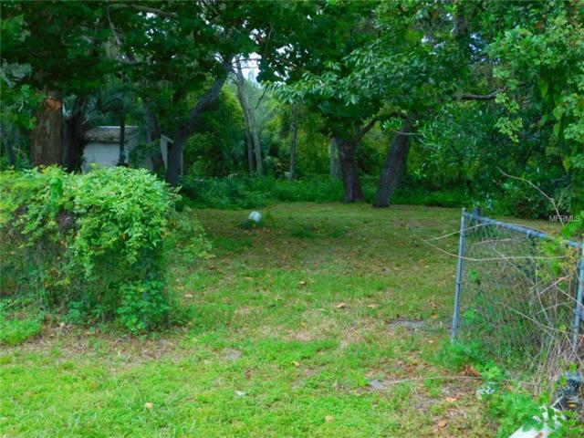 12151 Catalona Avenue, New Port Richey, FL 34654 (MLS #T3127540) :: G World Properties