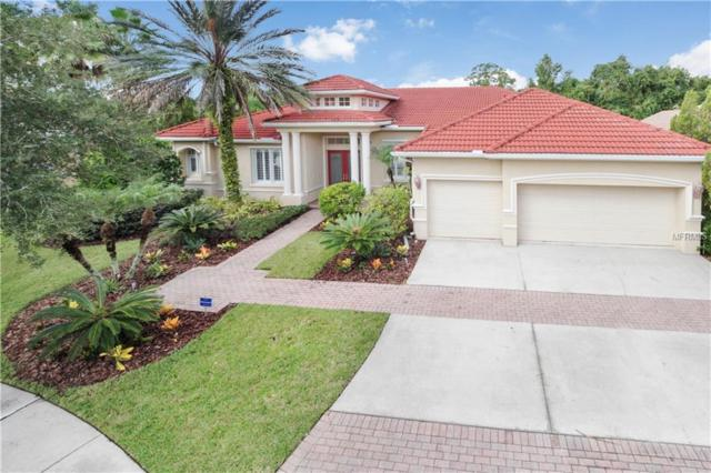 17204 Emerald Chase Drive, Tampa, FL 33647 (MLS #T3127802) :: The Duncan Duo Team