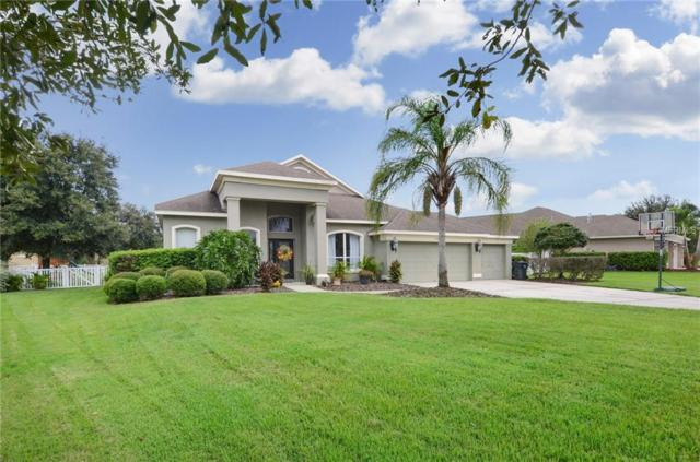 12418 Creek Edge Drive, Riverview, FL 33579 (MLS #T3127888) :: The Duncan Duo Team